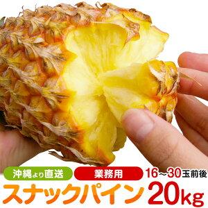 業務用 沖縄産スナックパイン(パイナップル)約20.0kg(16〜30個) 送料無料自社管理農園から直送だから安心保証付き沖縄産フルーツ パイナップルの通販はお任せ下さい ギフト 母の月 母の日 父