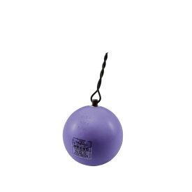 【送料無料】【NISHI ニシスポーツ】陸上競技 ハンマー (高校男子用・U20男子用) スチール 6.000kg NF241 [200406]