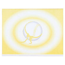 【ZETT(ゼット)】【アクセサリー】野球 寄せ書き用色紙 記念色紙(大判サイズ)(z-bcp2)