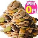 豆乳おからクッキー 蒟蒻マンナン入り 訳あり 2kg 1枚約16kcal 8種類のフレーバー(プレーン・胚芽・パンプキン・珈琲…
