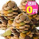 豆乳おからクッキー 蒟蒻マンナン入り 訳あり 3kg 1枚約16kcal 8種類のフレーバー(プレーン・胚芽・パンプキン・珈琲…