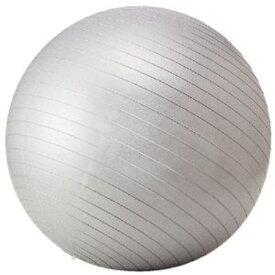 フィットネスボール65cm STT-069【RCP】