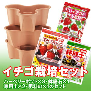 イチゴ栽培セット(ハーベリーポット)【RCP】