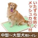 ボンビアルコン しつけるトレー XL メッシュタイプ【犬 トイレ ペット トレー メッシュ シート】