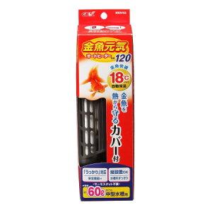 金魚元気オートヒーター120【ジェックスペットアクア水槽温度ヒーター】