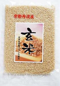 京都丹波の玄米 お試しパック300g 減農薬米令和元年産米 京丹波産 こしひかり玄米 新包装 減農薬米3袋までメール便で送料無料 源流水耕作 コシヒカリ