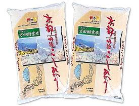 新米 令和元年産米 京都丹後産『上白米』万田酵素米 つやつや こしひかり 10kg(5kg×2袋)通算13回の特A実績【送料無料】【上白米 玄米】【RCP】fs3gm【HLS_DU】