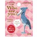 ハマナカ ワッペン Who are you ? ハシビロコウ H459-040