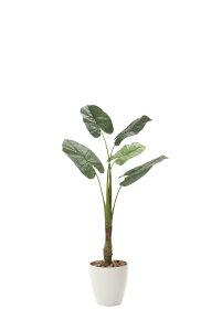 光触媒観葉植物 くわず芋1.35〔フロアタイプ(ミドルサイズ)〕/光触媒 観葉植物 フェイクグリーン 花 胡蝶蘭 開店祝い 開業祝い 誕生祝い 造花 アートフレーム おしゃれ 飾る 5Lサイズ 巣ごも