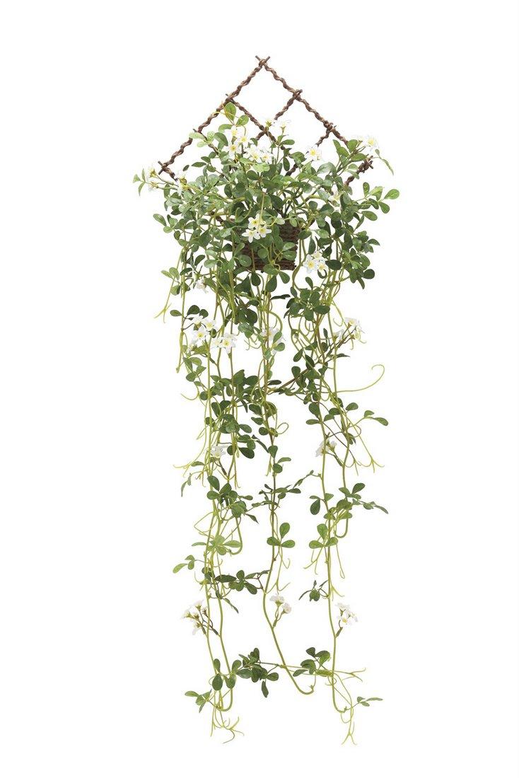アートグリーン 壁掛ジャスミン花付〔壁掛けタイプ〕/光触媒 観葉植物 フェイクグリーン 花 胡蝶蘭 開店祝い 開業祝い 誕生祝い 造花 アートフレーム おしゃれ 3Lサイズ