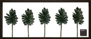 【リーフパネル】クッカバラ/インテリア 壁掛け 額入り アートパネル リビング 玄関 プレゼント ギフト モダン おしゃれ 飾る フェイクグリーン 4Lサイズ 巣ごもり