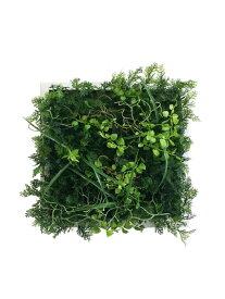 プラントフレーム Wall Plants frame ワイルドグリーン/インテリア 壁掛け 額入り 額装込 風景画 油絵 ポスター アート アートパネル リビング 玄関 プレゼント モダン アートフレーム おしゃれ 飾る Lサイズ