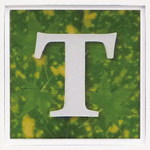 【アートフレーム】アルファベット アートフレーム グリーン/インテリア 壁掛け 額入り 油絵 ポスター アート アートパネル リビング 玄関 プレゼント モダン アートフレーム おしゃれ【S】