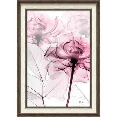【レントゲンアート】XRAYキャンバスアート「ピンクローズ(Mサイズ)」/50x70/LL