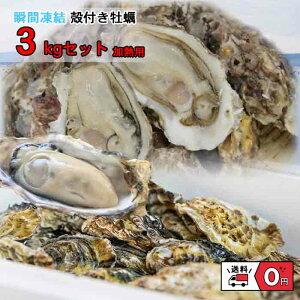 牡蠣 冷凍 カキ かき 貝 かい 2021年 新物 殻付き 真牡蠣 瀬戸内産 3キロ 産地直送 バーベキュー BBQ 加熱用