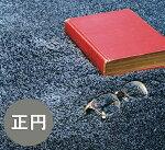 送料無料スミノエスミトロンニューツイスティ100×100100cm×100cm円形ソフトタッチシャギーラグです。ポイント5倍防炎防ダニ遊び毛防止日本製床暖ホットカーペット対応