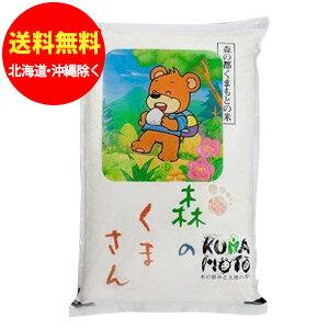 森のくまさん 熊本のお米 10kg