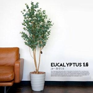ユーカリ 1.6(Eucalyptus 1.6) 光触媒 イミテーショングリーン(Imitation Green)