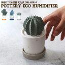 ハンワ HANWA 陶器エコ加湿器 気化式 サボテン 小 eco humidifier Cactus small ONL-HF014 加湿器 卓上 パーソナル加…