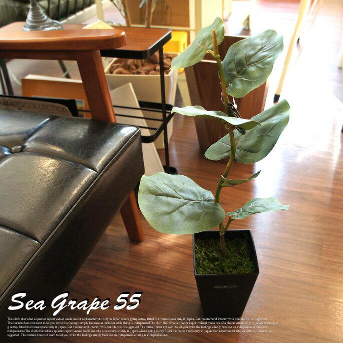【P10倍】大きな葉とブラックベースがおしゃれ! シーグレープ55 光触媒 イミテーショングリーン 日本製