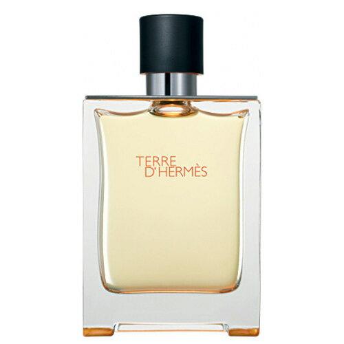 エルメス テールドエルメス EDT スプレー 500ml エルメス HERMES【あす楽対応】 香水 メンズ フレグランス