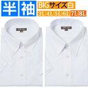 ワイシャツ 大きいサイズ 半袖 ボタンダウン 白無地 ワイシャツ ドレスシャツ カッターシャツ ビジネスシャツ メンズ …