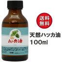 Sin 日本製 天然ハッカ油(ハッカオイル) 100ml 中栓付き・ 保存に最適な遮光ビン入り マスク アロマオイル・入浴剤 虫…