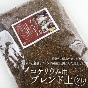 苔テラリウム 用土 コケリウム 土 2L コケリウムブレンド ソイル soil
