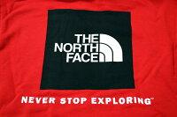 ノースフェイスパーカーレッドボックスザ・ノースフェイスザノースフェイスプルパーカースウェットパーカーフーディーメンズTHENORTHFACEREDBOXPULLOVERHOODIEUSAモデル2019年モデルフーディノースビッグサイズ品番NF0A3FRE