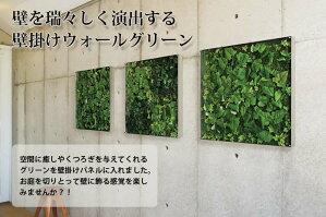 壁掛けウォールグリーンW45XH45XD5.6cm(アート花観葉植物造花インテリア飾り緑ウォールデコウォールアートフェイク新築祝いグリーンアートパネル家具壁付け壁掛けインテリア壁飾る人工観葉植物)