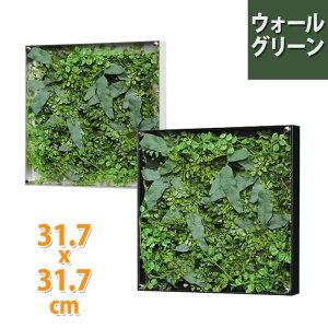 壁掛けウォールグリーン W31.7XH31.7cm ? 壁掛け おしゃれ フェイク アートパネル 観葉植物 玄関飾り トイレ 壁飾り グリーン インテリア ウォール ウォールアート グリーンパネル リーフ リー