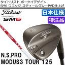 Sm6sgmd125-t00