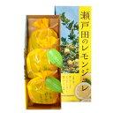 広島瀬戸田のレモンジュレ 3個