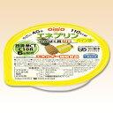 エネプリン パイン味 40g 区分3 [腎臓病食/低たんぱく食品/高カロリー]