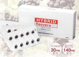 沒有沒有混合的貝拉GS(30粒)的貝拉拖網·葡萄種子由來、GSPP、投票苯酚高速濃縮、haiburitto·resubera、水溶性.2系統、吸收、葡萄、種子、投票苯酚·resubera·sachuin