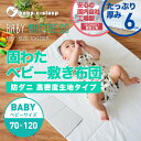 Shiki kata baby b 01