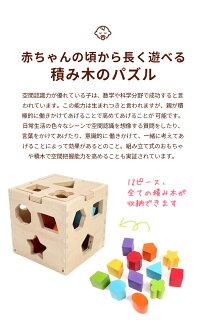 型はめはめこみおもちゃ知育パズルボックス色落ちしないカラフルな木製大きめブロック積み木でたのしく色彩感覚や立体感覚を身につけちゃおうかたはめ木のおもちゃ知育玩具!