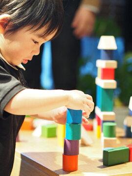 ニチガン12COLORSBLOCKS[C1]木のおもちゃ積み木つみき知育玩具12カラーズブロックス