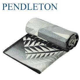 pendleton ペンドルトン NIKE N7 ブランケット コラボ ツインサイズ pendleton