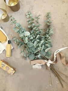 北欧 シミュレーション 緑 植物 ユーカリ 造花 フェイクフラワー リビングルーム ベッドルーム 玄関 屋内 装飾 緑の葉 花束 インテリア 雑貨 韓国雑貨