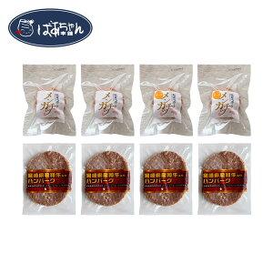 【送料無料】 夏のギフト メンチカツ&ハンバーグセット(メンチカツ(プレーン2個、チーズ2個)・宮崎牛入りハンバーグ4個) ばあちゃん本舗