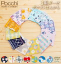 Pocchi01