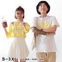 Fs dx6469 01