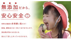 【お得な2個セット登場】送料無料(北海道・沖縄送料700円)訳ありおばあちゃん家の梅400g×2入しそ入紀州南高梅と国産しそを使用しています。さらに梅樹園独自の製法で他にはない香り高い紫蘇漬け梅に!正真正銘の無添加。人工甘味料・保存料・着色料・香料不使用。