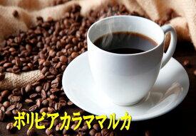 【お好みの焙煎します】ボリビア カラママルカ 100g コーヒー 珈琲  Coffee【HLS_DU】10P03Dec16