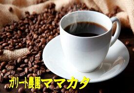 【お好みの焙煎します】パナマSHB ガリード農園 ママカタ 200g コーヒー 珈琲  Coffee【HLS_DU】10P03Dec16【RCP】