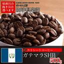 【お好みの焙煎します】 ガテマラSHB 500g コーヒー 珈琲  Coffee10P03Dec16【RCP】
