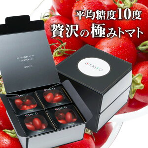 【トマトグランプリ総合優勝】オスミックトマト 120g×8パックセット(960g) ミニ プレミアム 糖度10 国産 フルーツトマト 高糖度 最高級 最高品質 OSMIC TOMATO プレゼント ギフト 高級 トマト 贈り