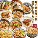 無添加 どんぶりの素 11種類22食 詰め合わせセット レトルト フリーズドライ 食べ比べ 和風 中華 簡単調理