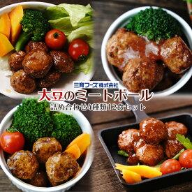 レトルト 惣菜 三育フーズ 大豆ミートを使ったミートボール お試し 詰め合わせ 4種12食セット ヘルシー 野菜 ベジタリアン 弁当 ランチ